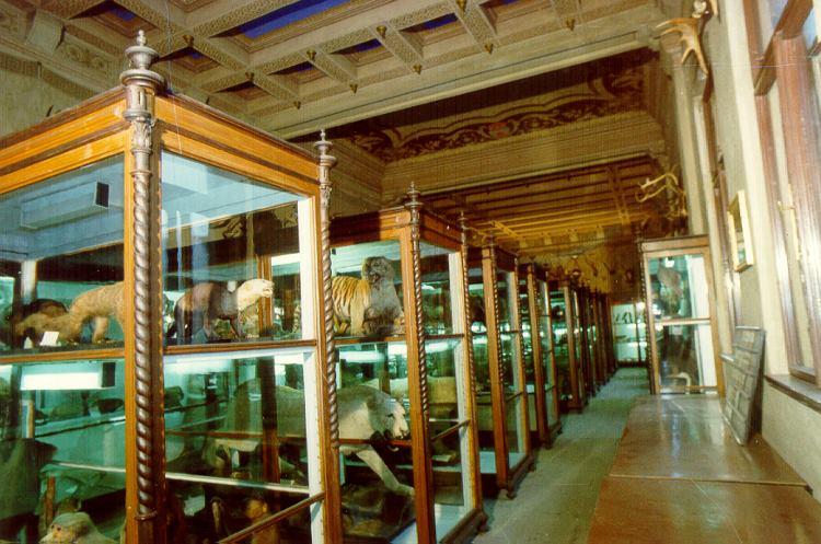 Mobiliář muzea kulturní památkou