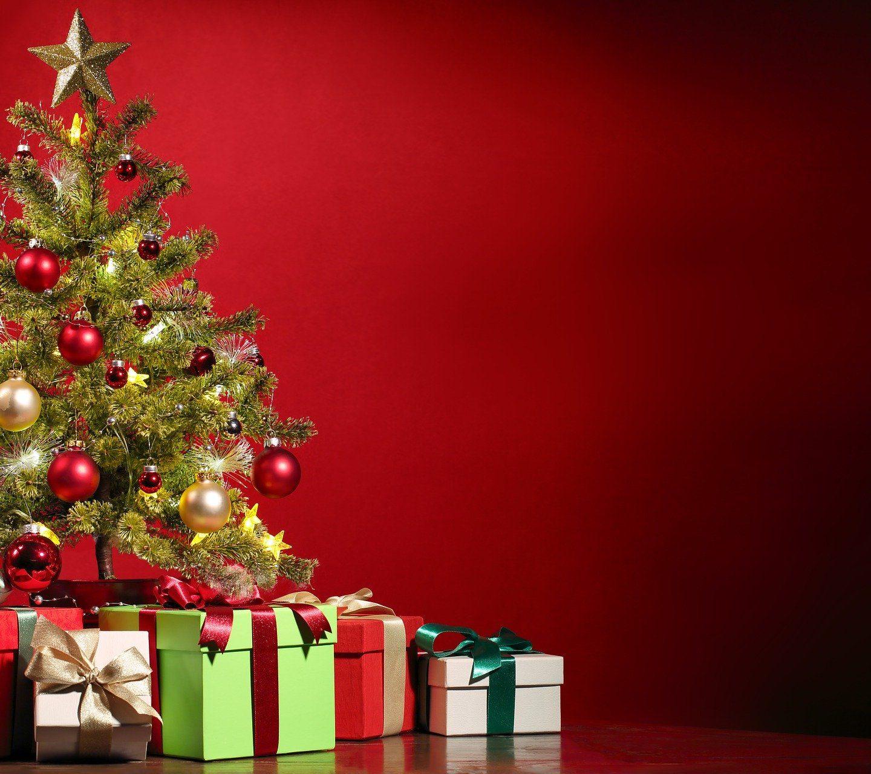 O Vánocích bude knihovna zavřená